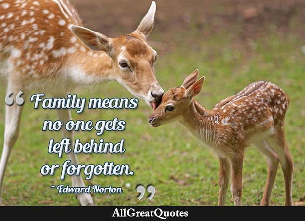 no one left behind family quote