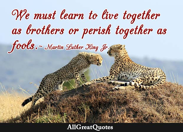 live together as brothers martin luther king jr