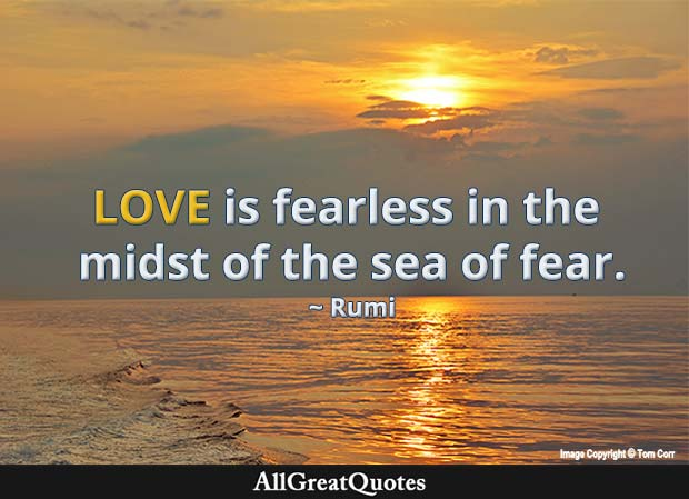 love is fearless - rumi