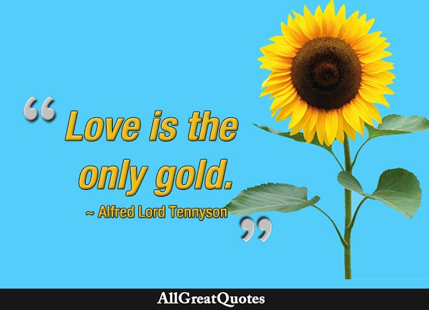 love the only gold quote - tennyson