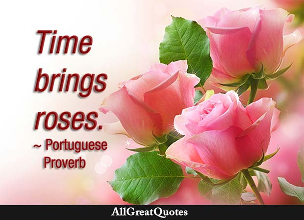 time brings roses proverb